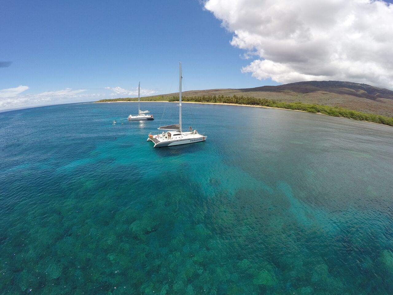 sail maui catamarans maui performance sailing