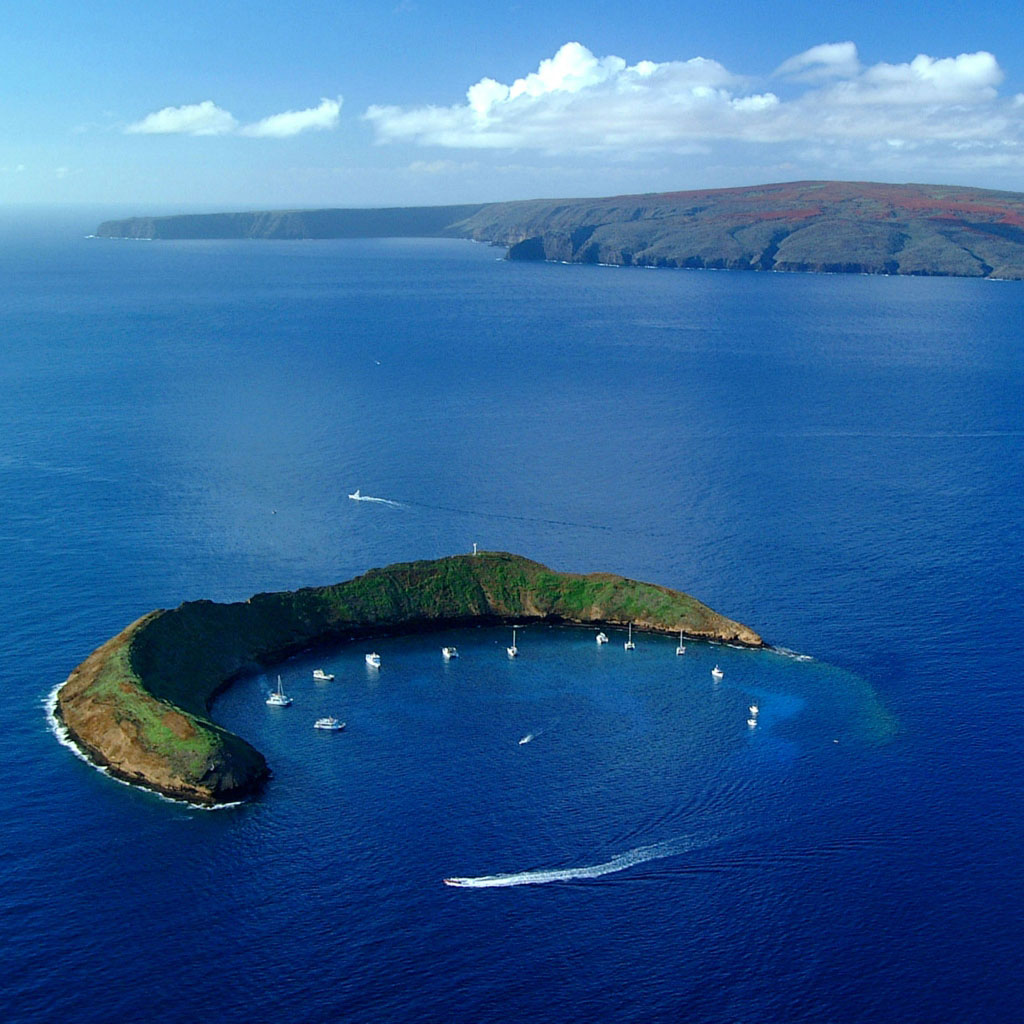 Tropical Island Tours Maui