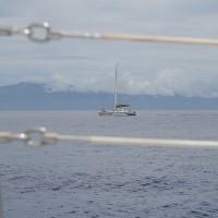 Sail Maui catamaran Paragon on pali snorkel