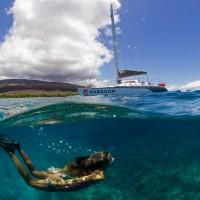 Sail Maui snorkel sail to Lanai