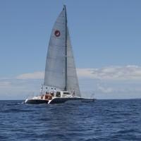 sail maui paragon lanai beach picnic sail