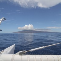 whale-watching-tour-maui-sail-maui-500-333