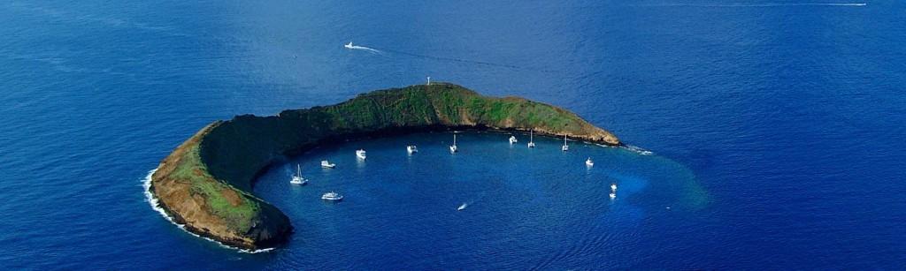 Molokini snorkeling maui island